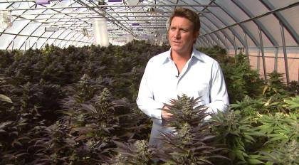 Josh Stanley is moving his medical marijuana operations to New York. Photo courtesy of Josh Stanley,