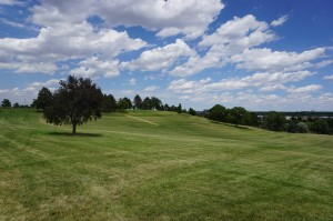 Levitt chose Ruby Hill Park for its natural bowl-shaped landscape. Photo by George Demopoulos.